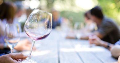Conheça a vinícola que é um sucesso na fabricação de bebidas